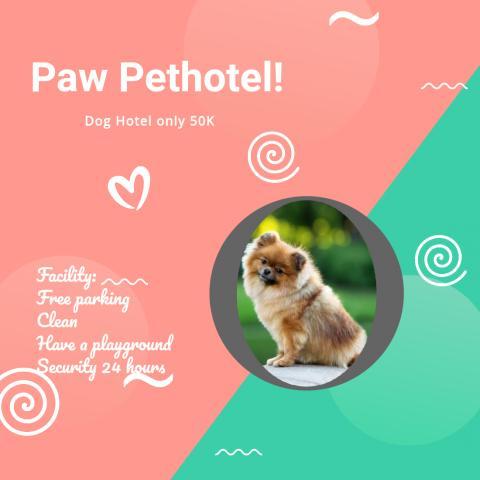 Foto: Petshop di Pakuwon City